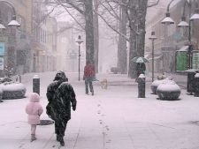 zapada ninsoare