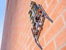 spiderobot