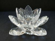 lotus simbol