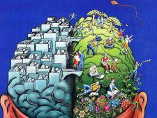 pitici pe creier zodii