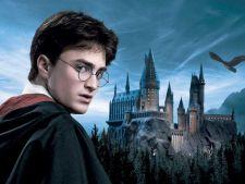 Expertul Acasa.ro, psihoterapeut Marcelica Chiriac: Copilul - de la Harry Potter la existenta prin el insusi