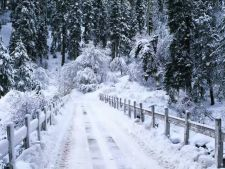 Zapada de 30 de centimetri in octombrie in Romania! Cod galben de ninsori
