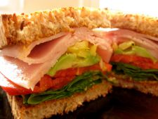 sandvis curcan