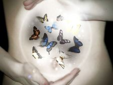 Expertul Acasa.ro, dr Ana Falca: Becul si fluturii