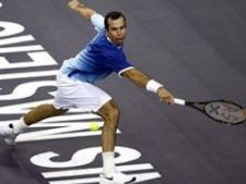 478610 0811 stepanek