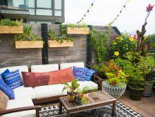 Gradini urbane. Cum dai un aer luxuriant terasei sau balconului unui apartament