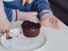 Totul despre nutritia pediatrica: de la diversificare pana la nutritia scolarului