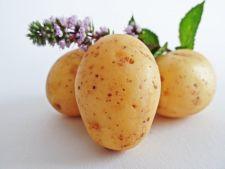 8 utilizari mai putin stiute ale cartofului. Elimina rugina si petele de pe fata