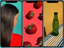 3 categorii urbane de utilizatori de iPhone X