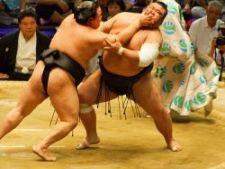 552292 0812 sumo