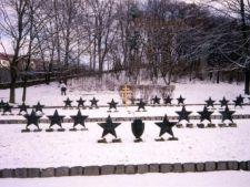 505781 0811 cimitir sovietic