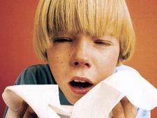 480560 0811 copil gripa