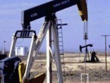 440559 0810 sonda petrol