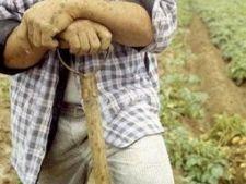 434456 0810 agricultori