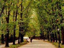 Parcurile din Bucuresti