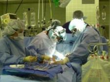 503988 0811 transplant