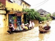 485351 0811 furtuna vietnam