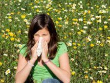 plante_alergie