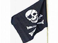 498159 0811 steag pirat