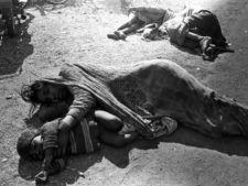 489317 0811 bhopal