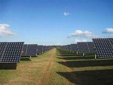Solar-plant-FLORIDA