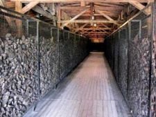 500059 0811 Majdanek