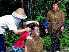 chinezi albine