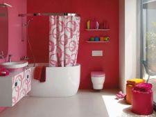 Cum previi aparitia mucegaiului in baie