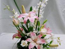 Cum realizezi un aranjament floral Ikebana