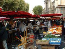 piata in Italia