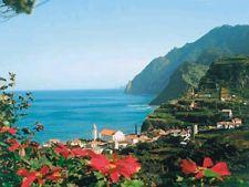 Luna de miere in Madeira