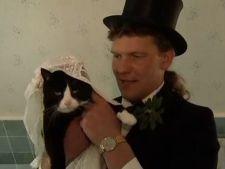 casatorie pisica