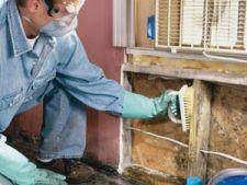 Cum sa reduci umezeala si mucegaiul in casa