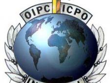 544560 0812 interpol logo