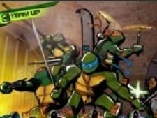Teenage Mutants Ninja Turtles