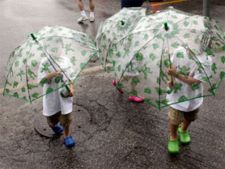 ploaie broaste