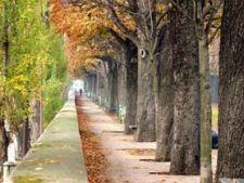 toamna in Paris