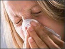 alergie fan