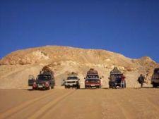 safari desert