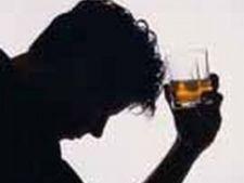 433765 0810 alcool