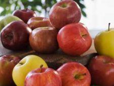 Cand este bine sa mancam fructele?