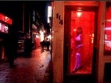 cartier felinare rosii amsterdam