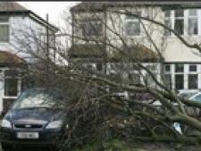 copac cazut furtuna liverpool