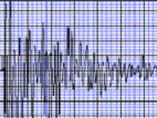 cutremur grafic