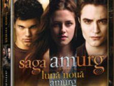 saga amurg