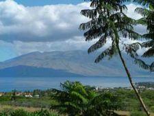 Destinatie de Vip: Insula Maui