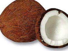 nuca de cocos1