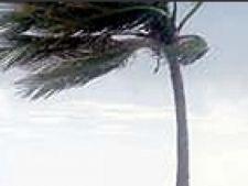 Uraganul Ernesto