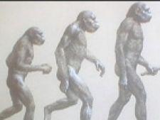 evolutie om