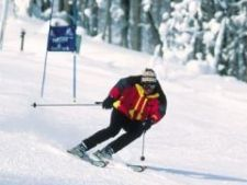 499948 0811 ski